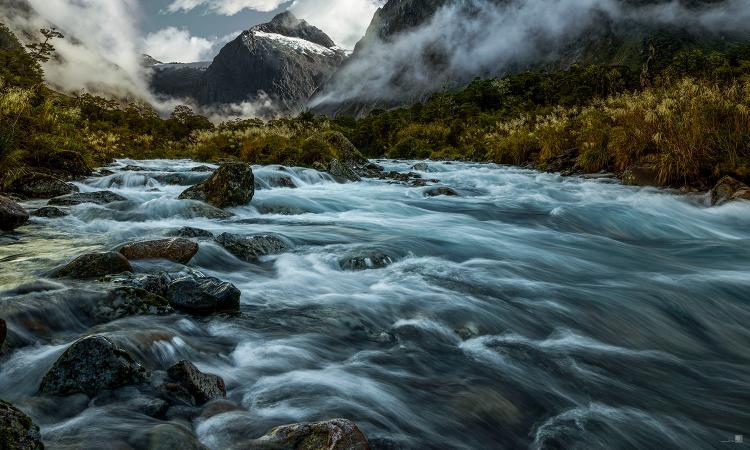 romer_landscape_20.jpg