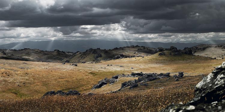 romer_landscape_21.jpg
