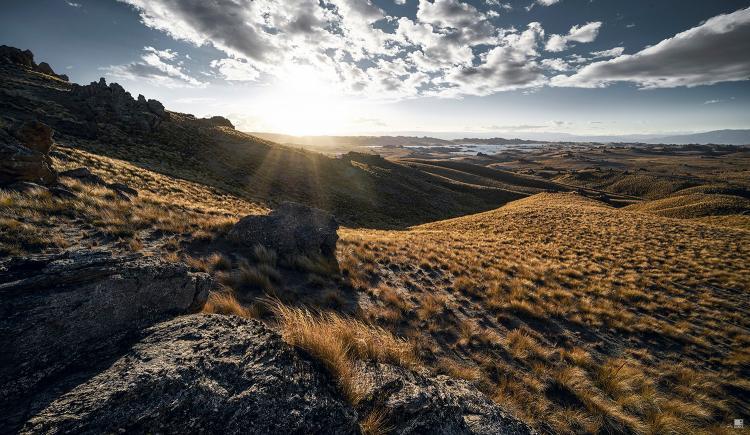 romer_landscape_16.jpg